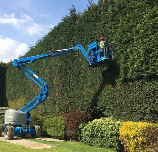 Tree Surgeon Peterborough